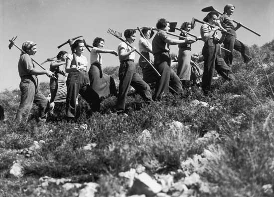 avraham malavsky, to work, 1937, jnf archive