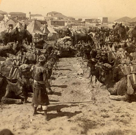 On the way to Mecca,stop in Jaffa, 1900�
