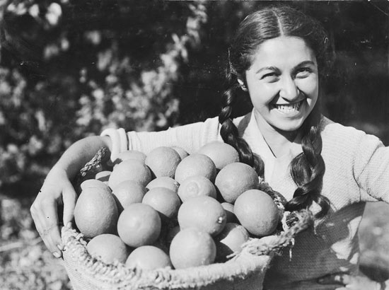 josef schweig, young woman with a basket of oranges, 1935, jnf