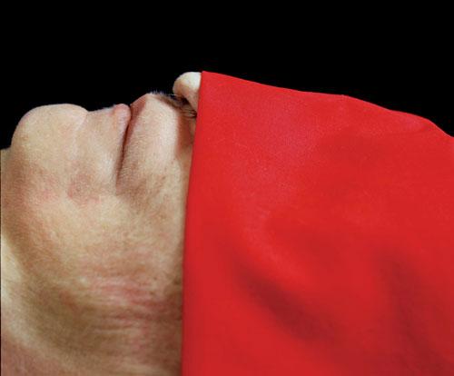 אנדרה סרנו, דלקת קרום המוח קטלנית, 1992, באדיבות האמן וגלריה איבון לאמבר, פריס, ניו-יורק