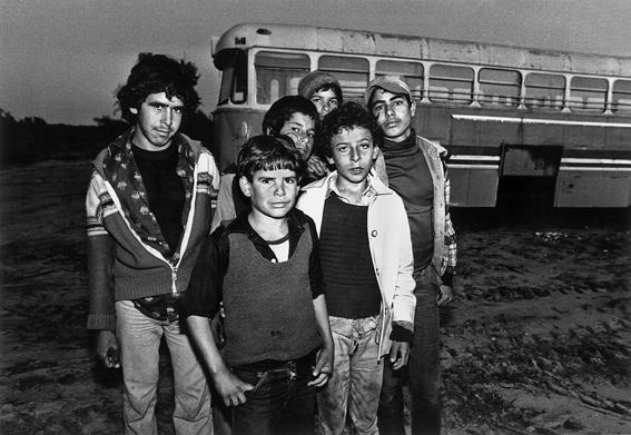 ענת סרגוסטי, עבודת ילדים, ילדים פלסטינים בעבודה חקלאית בשרון, תחילת שנות ה-80של המאה ה-20